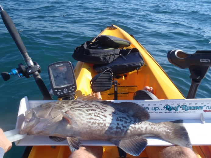Personal best snapper and grouper-004-jpg