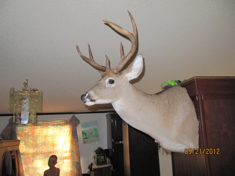 got my mount back ,,,aka bigboy-004-jpg