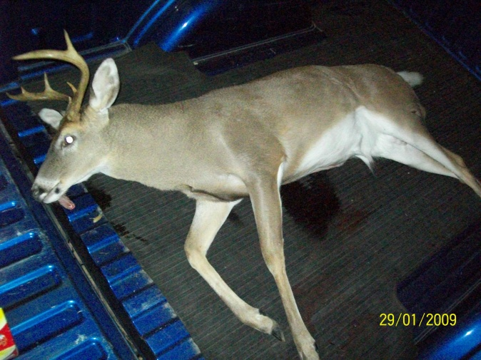 Whats the best deer cleaning station?-022-jpg