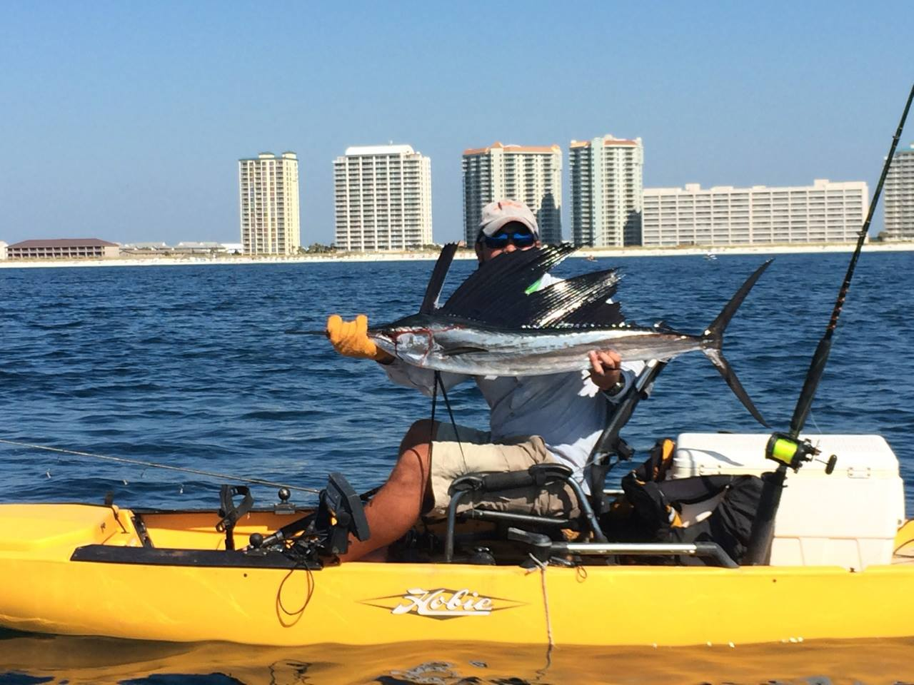 Another day, another sailfish-10582955_374035979388073_7436800016199208636_o-jpg