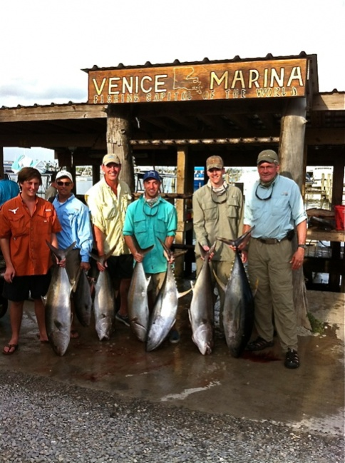 Tuna are getting bigger....and from the looks of it stronger.-1411-jpg