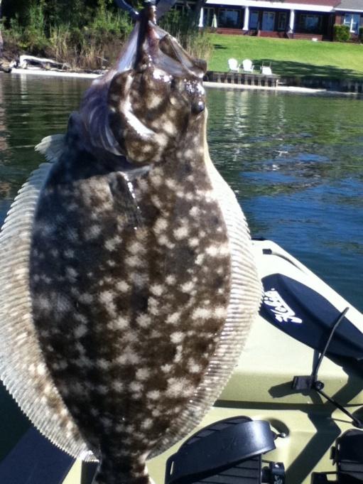Icw 10/2-18-flounder-jpg