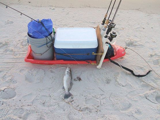 Beach Sand and Pier Carts-1sttrout2-jpg
