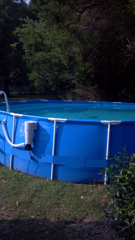 Above Ground Pool For Sale Pensacola Fishing Forum