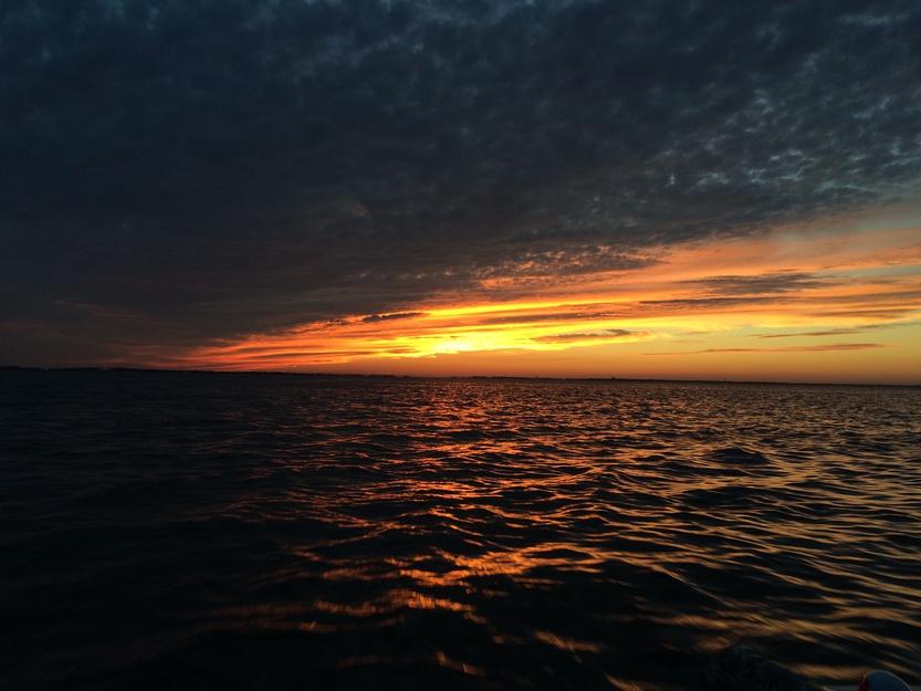 Mullet and flounder 11/8-2014-11-08-17-00-03-jpg