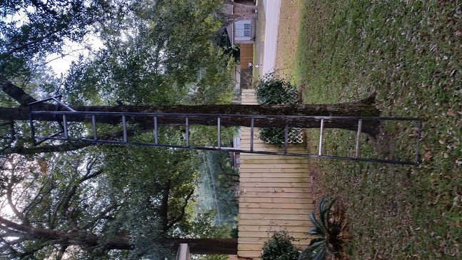 Ladder stand vs. Hang-on and sticks-20141120_130230-jpg