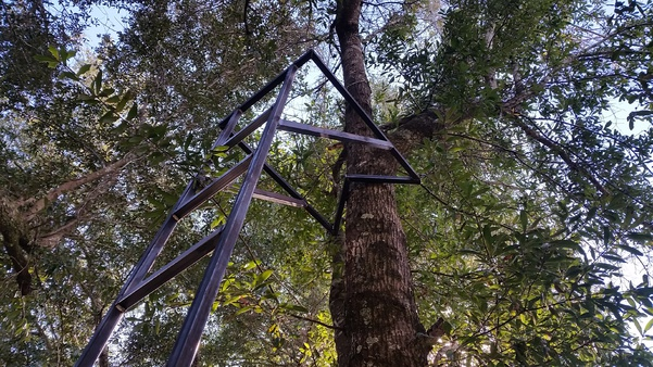 Ladder stand vs. Hang-on and sticks-20141120_130253-jpg