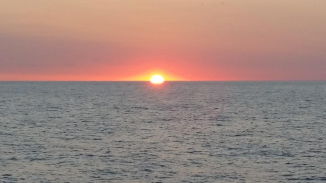Blue Marlin, Sailfish, Tuna, Wahoo, Dorado....-20160506_195104-jpg