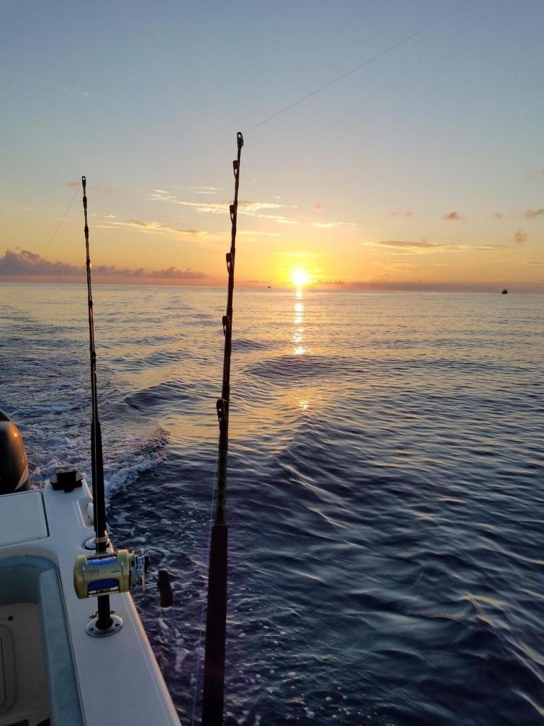 Anyone caught yellowfin lately?-20180609_055945_1528987282911-jpg