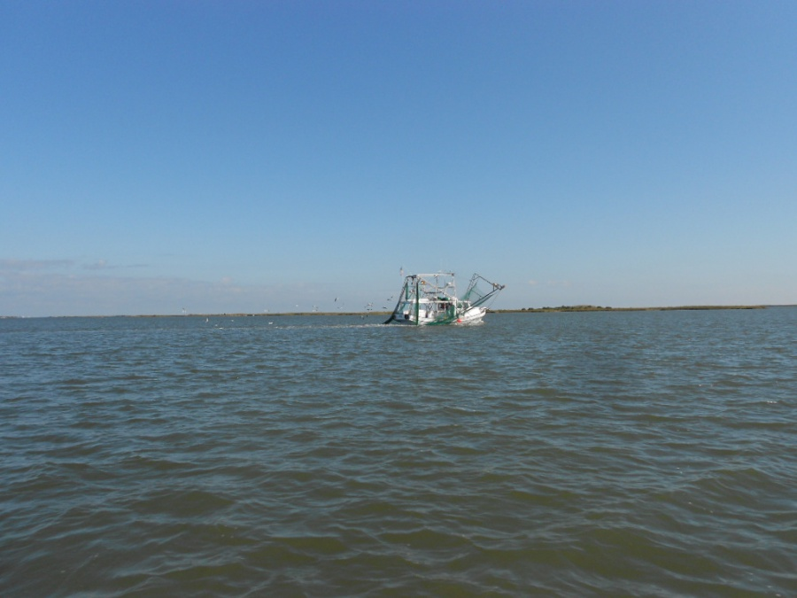 Port Sulpher, Louisiana, Happy Jack, two days of extreme catching fish-24-jpg