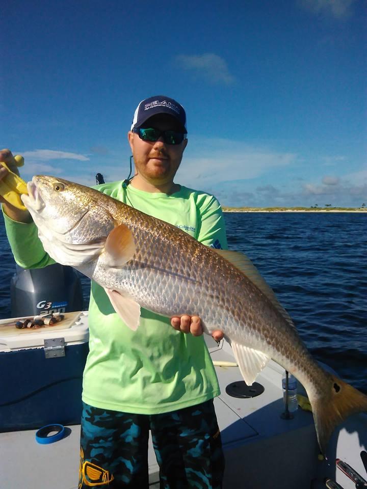 Bay Fishing Charters-38446611_2190190754595498_4599566445351796736_n-jpg