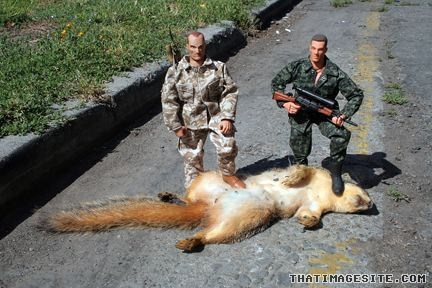 As new attack by Squirrel?-4239831100_3f265dc293-jpg