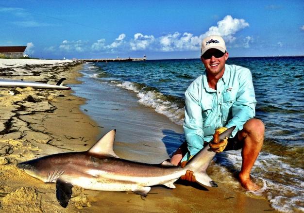Sharks on the Beach 4.8.2012-471248_3462527133964_211936482_o-jpg