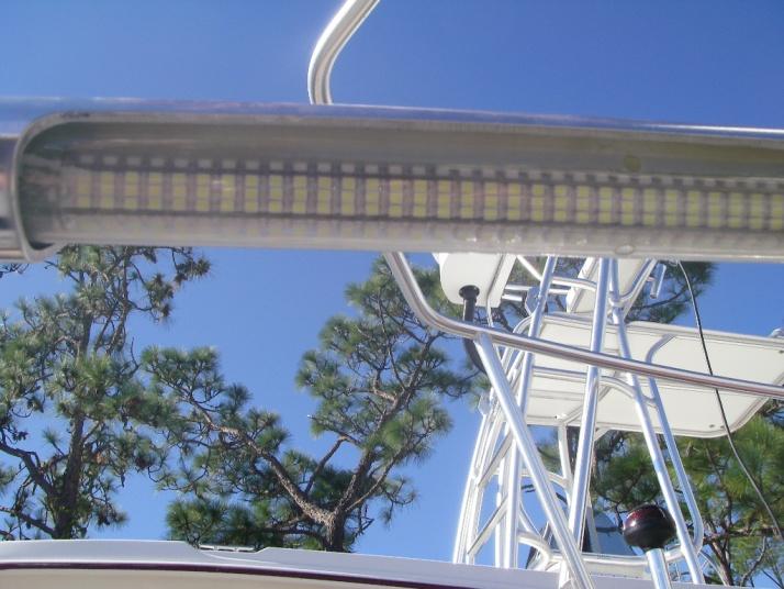 LED Flounder set up-536-jpg