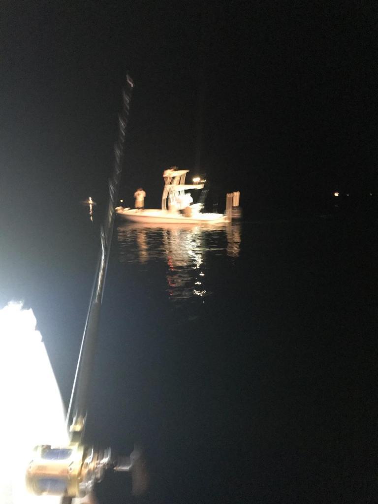 Anyone caught yellowfin lately?-6054_1528685765085_1528987222499-jpeg