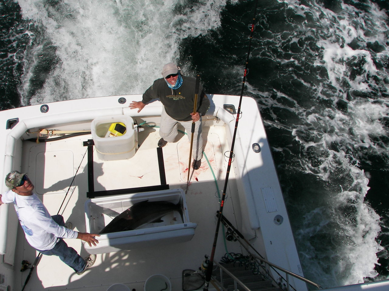 Cobia Season Primer-71-cobes-april-008-jpg