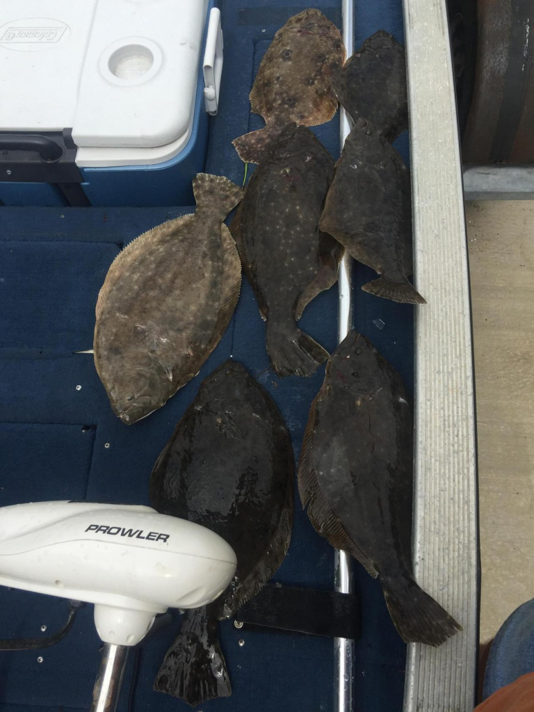 New flounder light setup-75328a8c-9dcf-4619-a1f5-5269d6237246_1507595992076-jpg