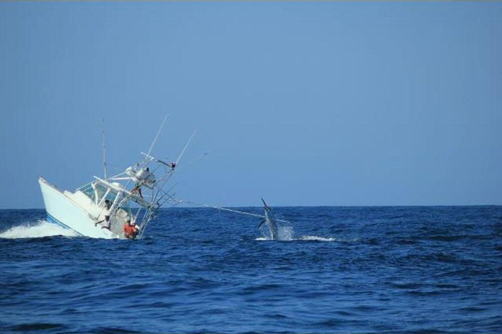 Boat sinks with marlin on the line-775206_10152450718735506_1979038301_o-jpg