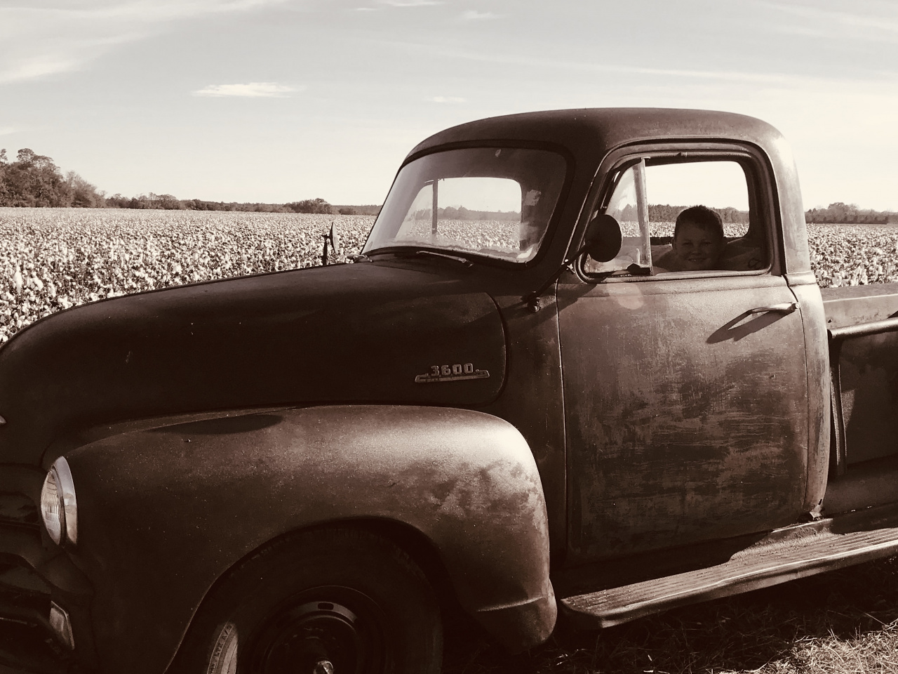 Take your fall  pics by the cotton and old truck-7dfa035e-49c0-4e6f-8d84-d6df1d42115c-jpg
