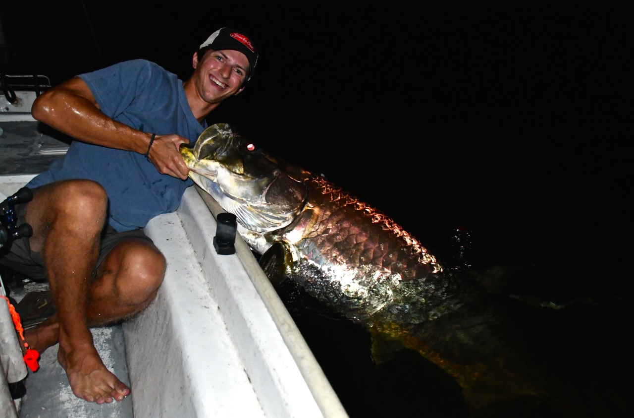 Lose Something Near Graffiti Bridge?-8-15-badass-tarpon-photo-personal-record-jpg