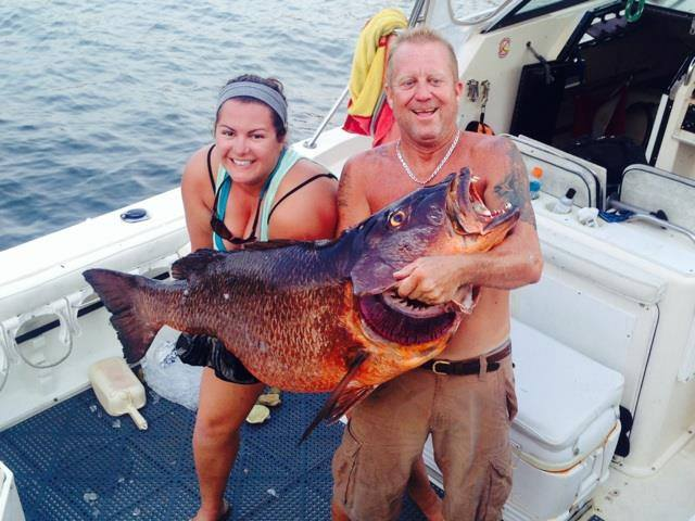 Local dive master shoots 81 pound cubera snapper-81lbcubera2-jpg