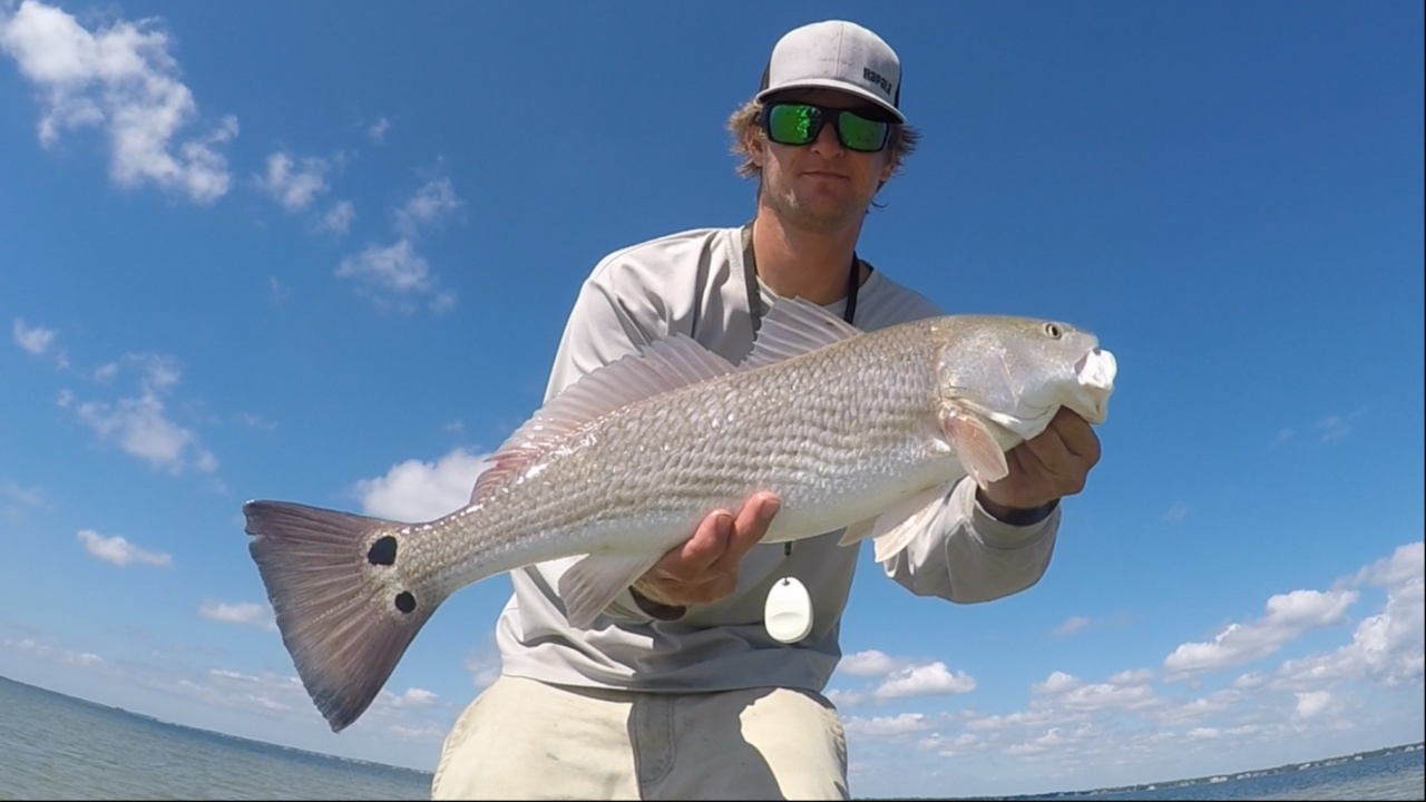 Big Trout and Redfish in the Fall-96f4ead8-f567-438d-84c7-9270b5c6cbb3_1541548731358-jpg