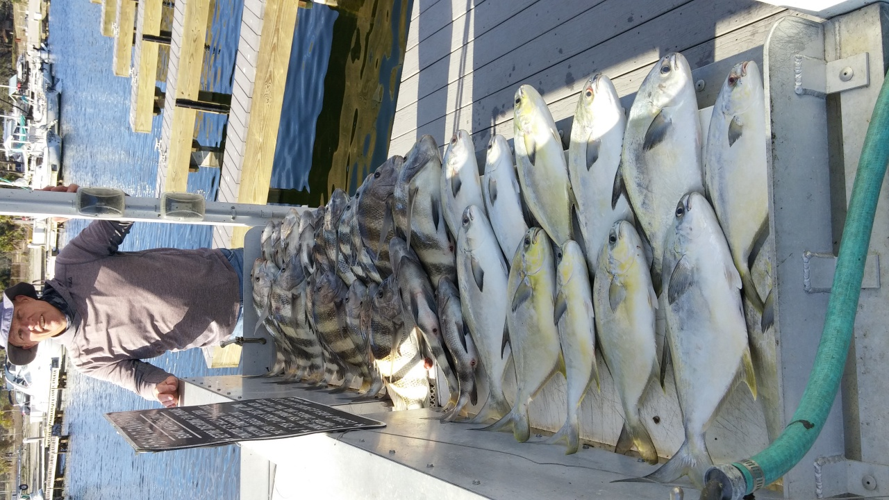Pompano and Sheepshead in the pass-9mar18-1-jpg