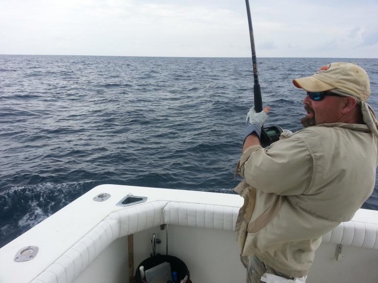 6/16 Report C-Horse-alan-blue-marlin-jpg
