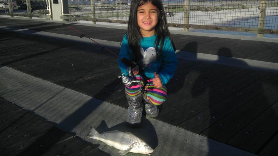 Took my daughter fishing...pier rat in the making!-aylas-whiting-jpg