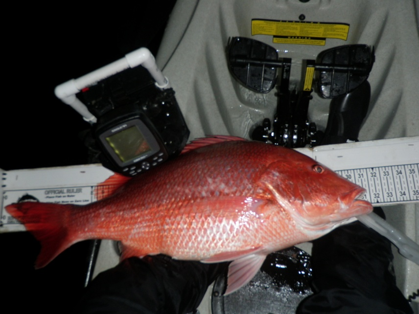 Nice Snapper Night + Groupers & Red-big-kw-snapper-011-jpg