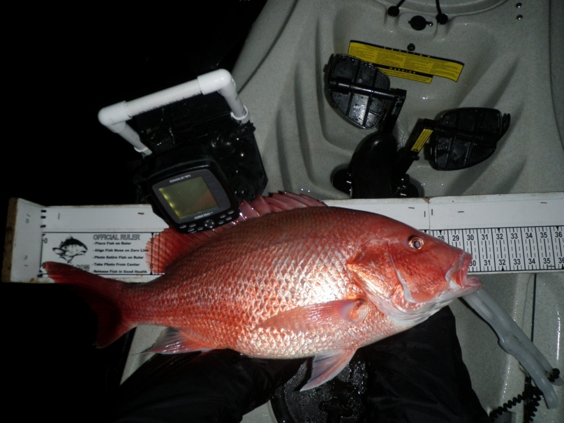 Nice Snapper Night + Groupers & Red-big-kw-snapper-013-jpg