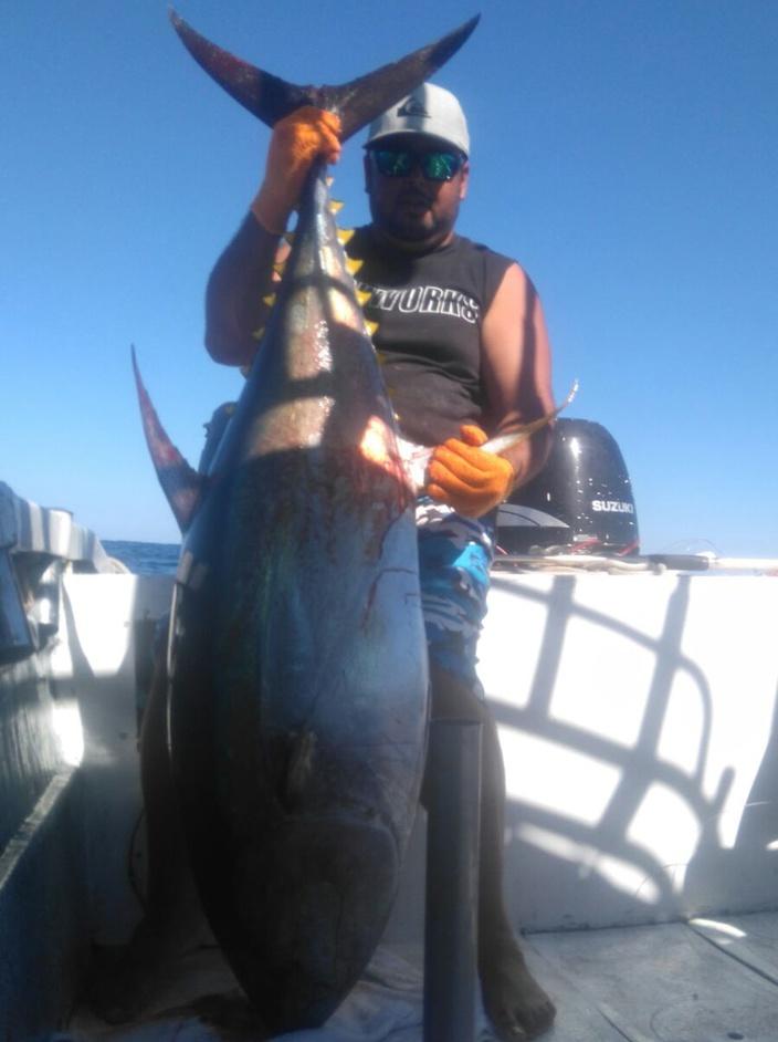 Yellowfin Tuna fishing Report Puerto Vallarta-big-tuna-captain-cesar-puerto-vallarta-fihsing-report-jpg