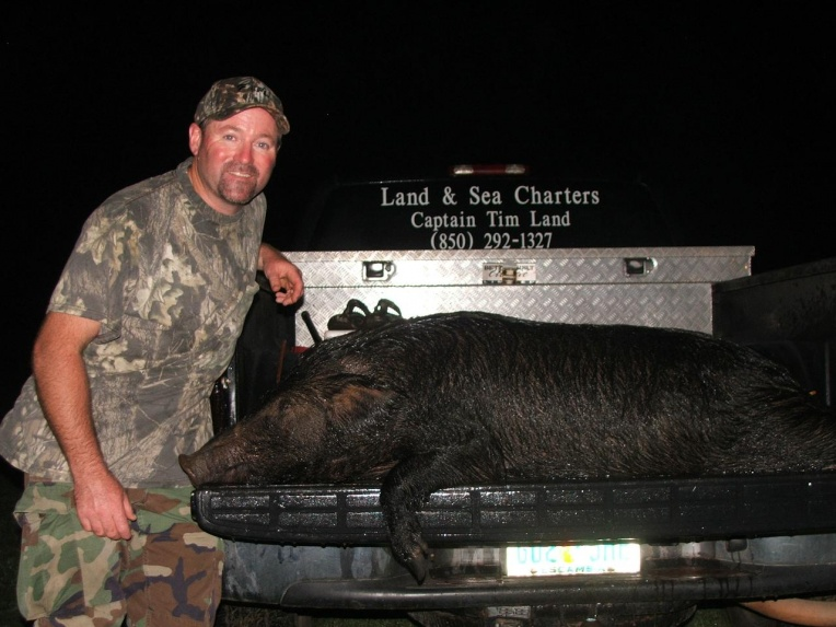 "Land & Sea charters/guide service ""Big Hogs""-big95sow95004-jpg"