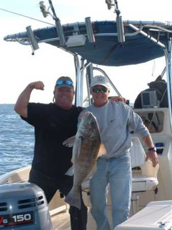 How and where to catch a big black drum-black-drum-jpg