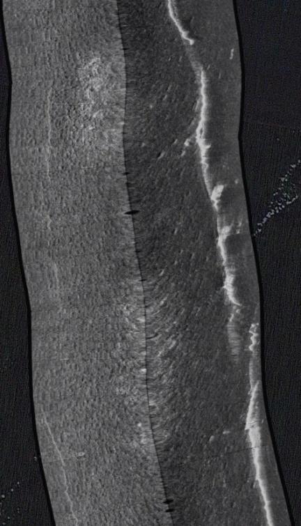 Side-scan sonar pics: 1500' of concrete pipe in Bay-broken-section-2-jpg