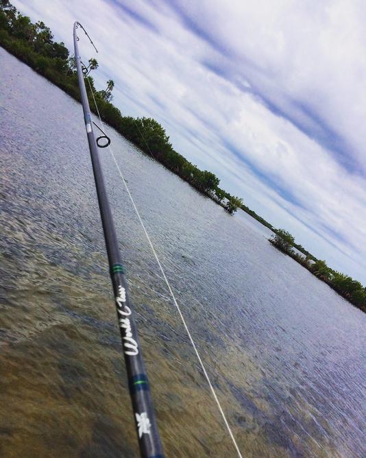 Crystal River this past weekend-chris3-jpg