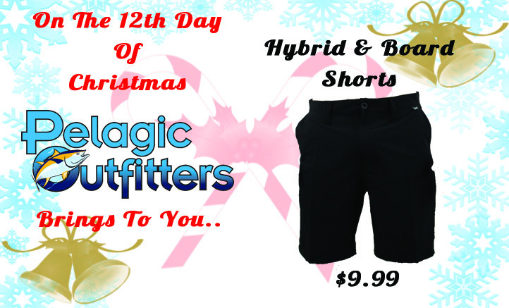 On the 12th Day of Christmas Hybrid & Board Shorts .99!!!-day-12-wave-life-shorts-banner-jpg