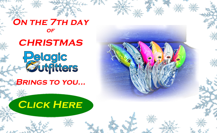 On the 7th Day of Christmas, Tuna Killers!!-day-7-jpg