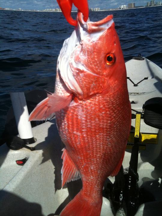 Monday the boss and I took off work-dougs-3rd-red-snapper-jpg