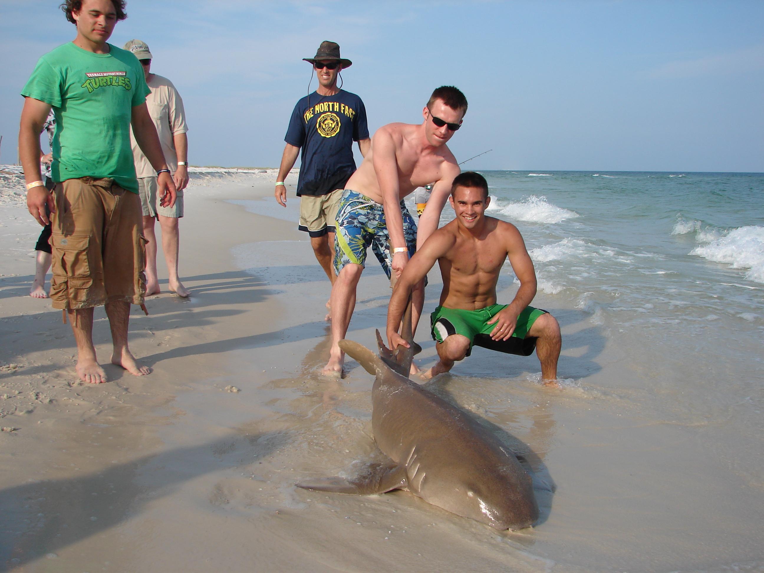 Pensacola area shark fishing!!! with pics!!-dsc04992-jpg