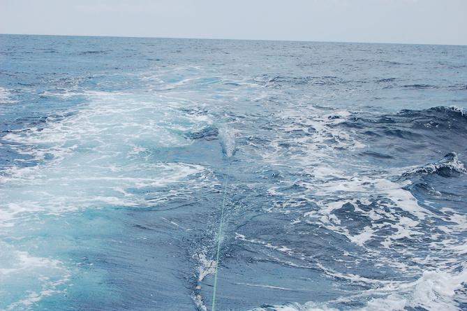 Blueish water 8/16-dsc_0008-jpg