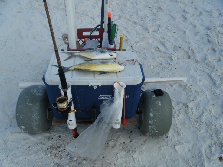 Best Beach Cart Ever-dscf0283-jpg