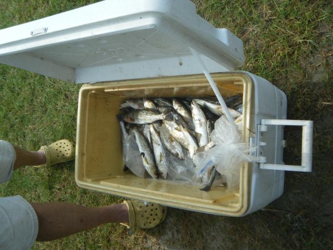 DIY Louisiana Redfishing-dscf2764-jpg