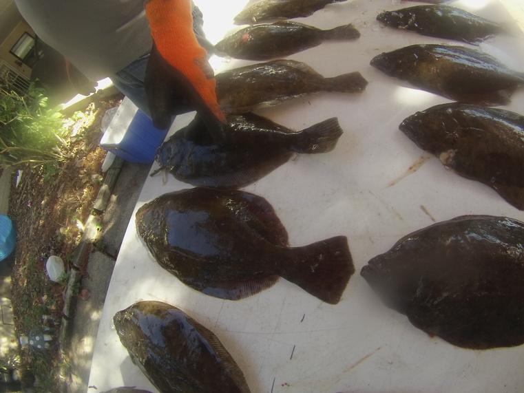 good night-eat-flounder-006-jpg