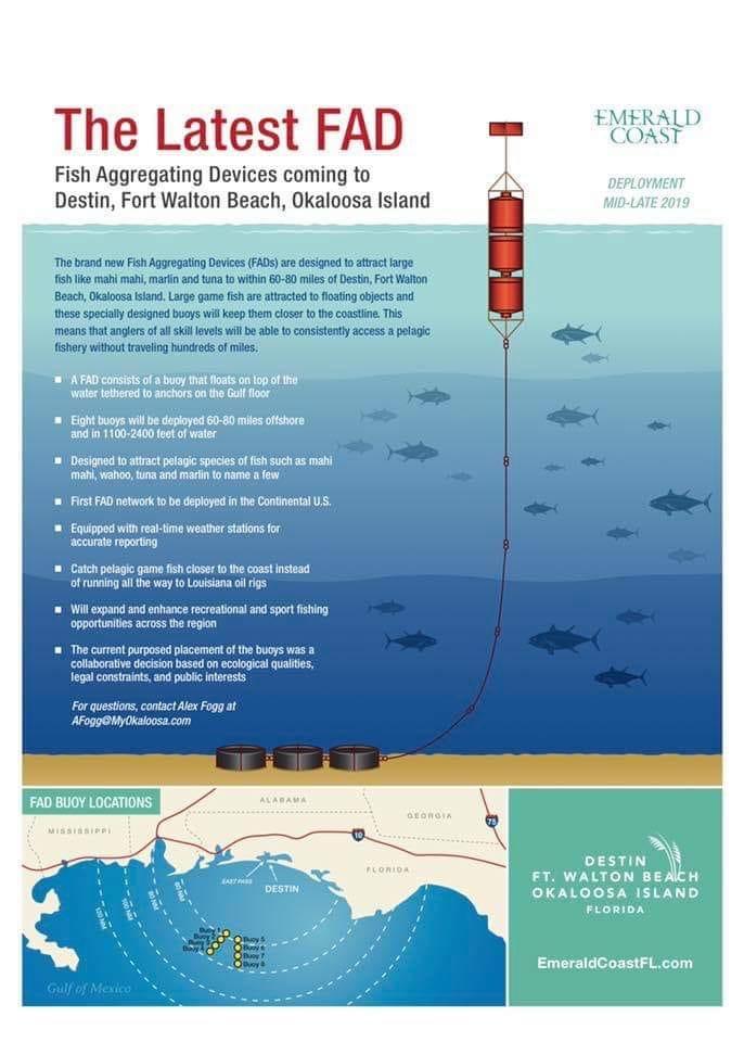 Offshore FAD info-fd3cffad-0282-4dc8-a30b-acb22701e034-jpeg