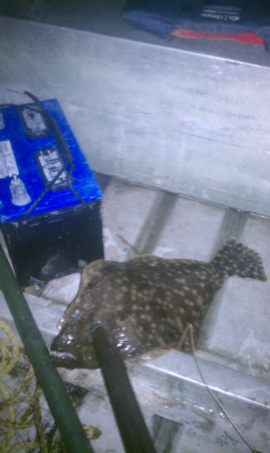 Trip 7/6/11-first-flounder-gigged-jpg