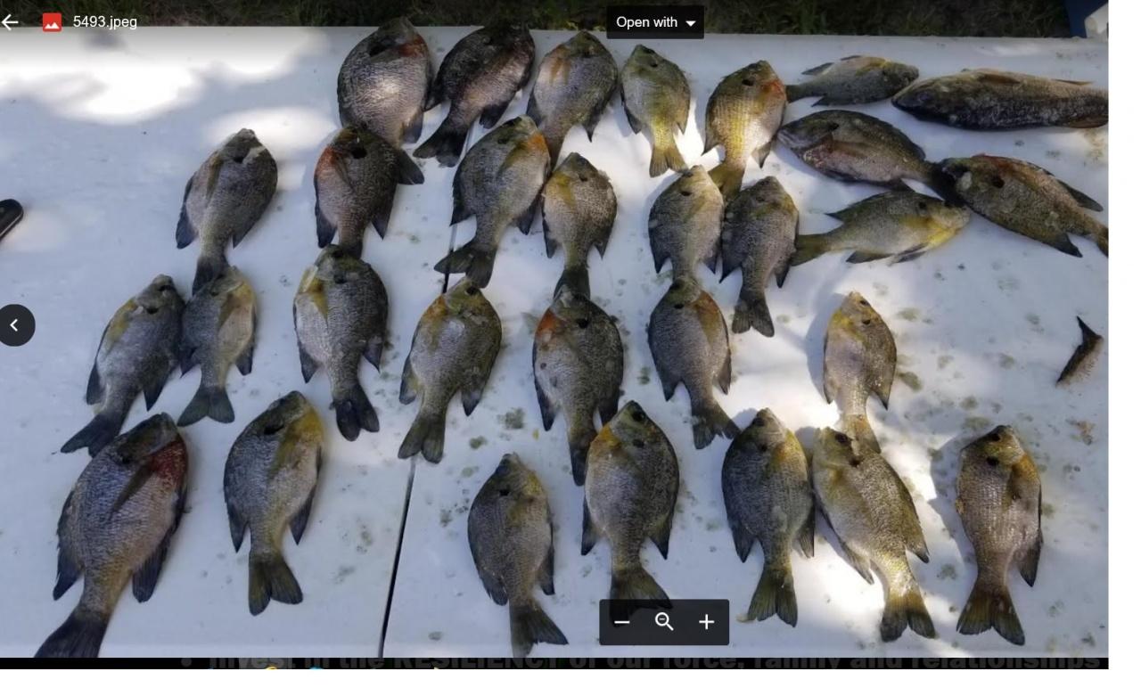 Choctawhatchee bream 9-22-18-fish2-jpg