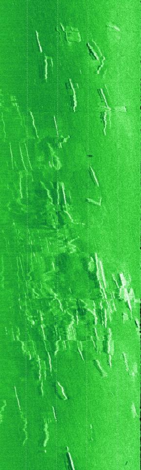 Side-scan sonar pics of Pensacola Fishing Pier rubble #1-fishing-bridge-i-jpg