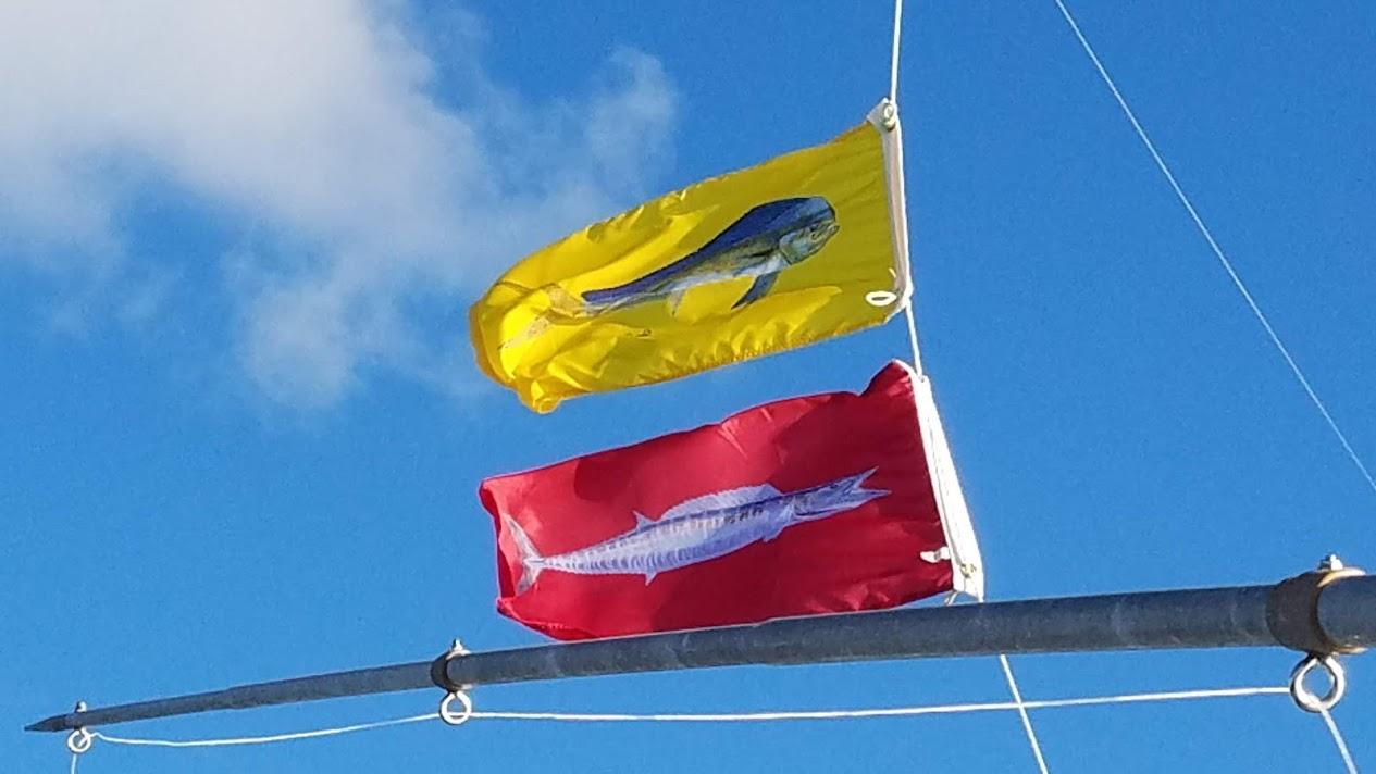 C-Horse on the Edge 9-9-18-flags-jpg