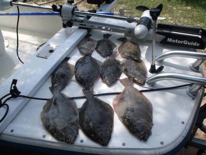 July 16-flounder-7-16-001-jpg